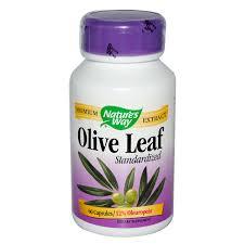 oliven blad